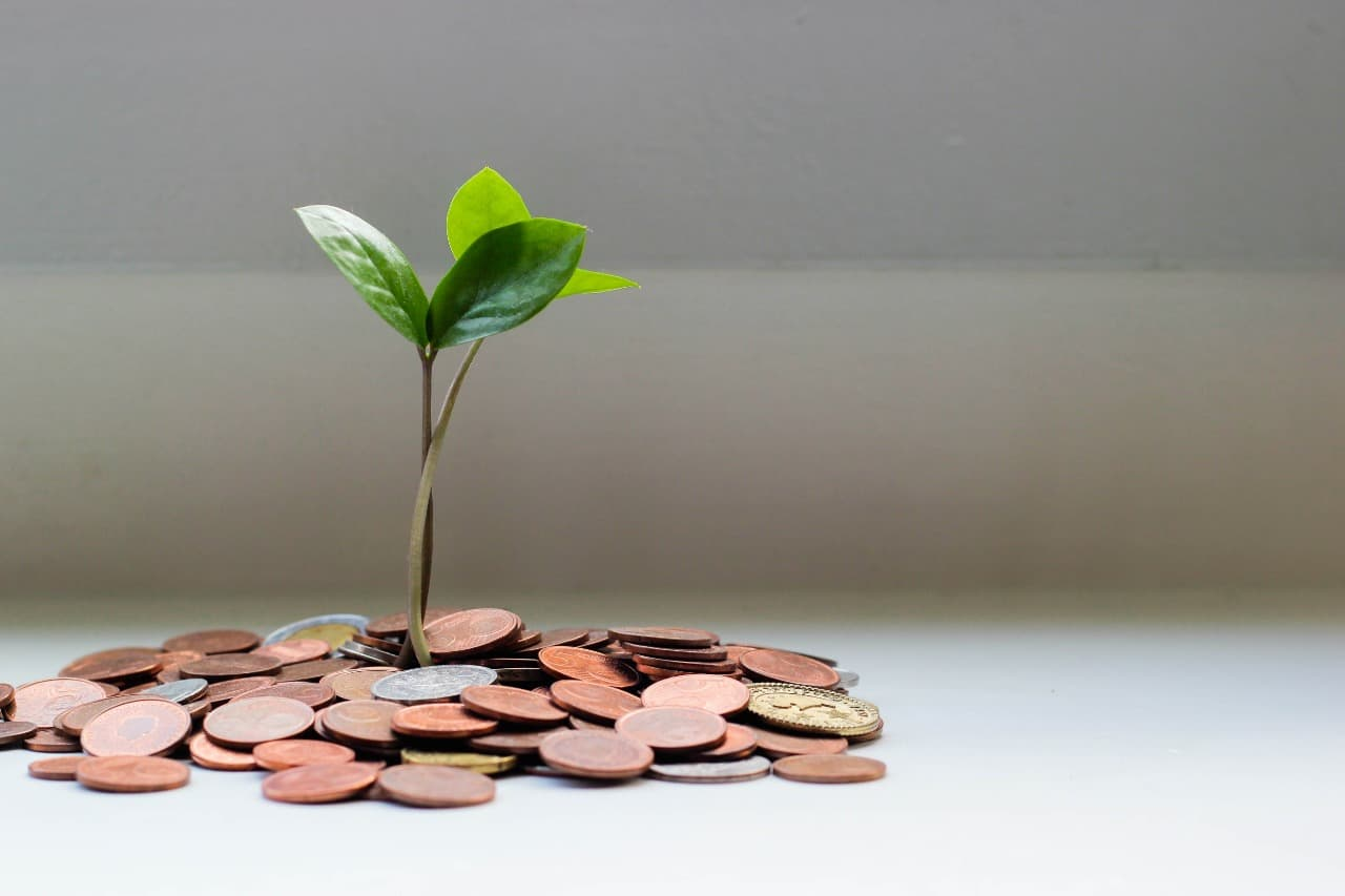 levantamiento capital startups